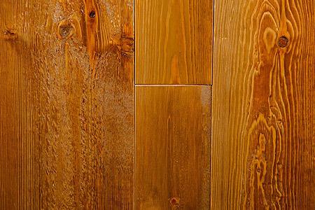 Rustic Autumn Pine